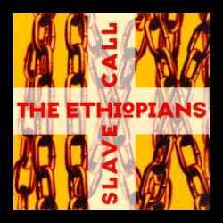 ethiopiansownerfeyardslide.jpg (9854 bytes)